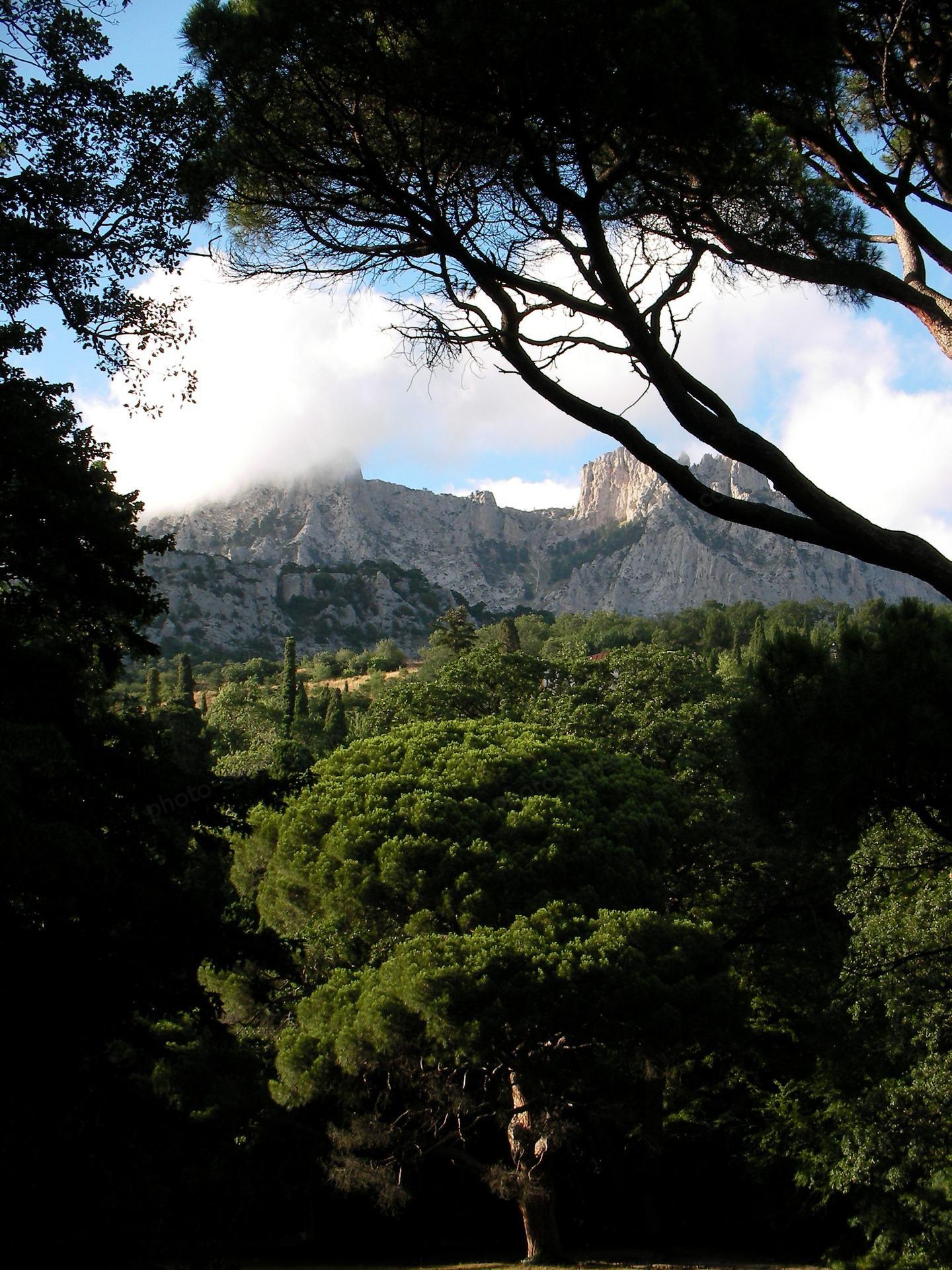 Όμορφη θέα στα Βουνά της Κριμαίας μέσα από τα δέντρα και τα σύννεφα