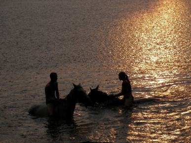 Boy and girl swimming on horseback