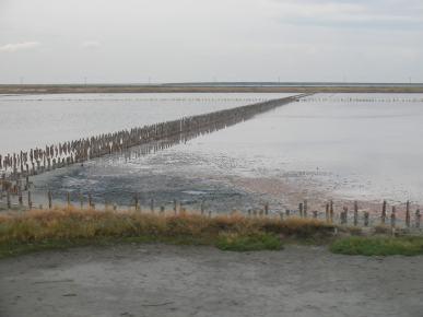 Lake Sivash met therapeutische modder in de buurt van de Krim