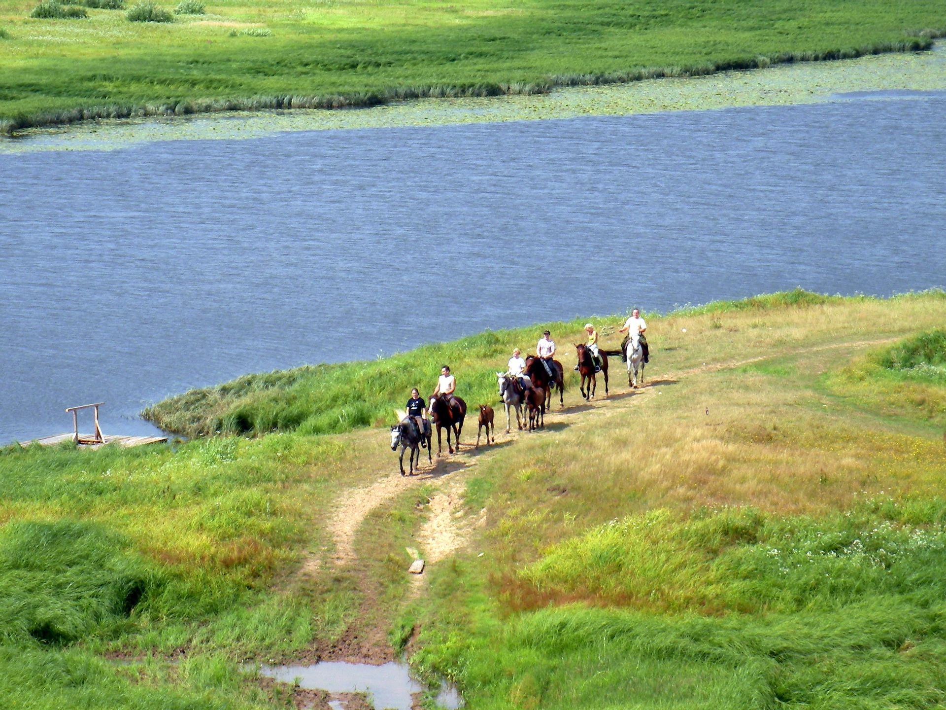 الناس يمشون على طول شاطئ البحيرة على الخيول