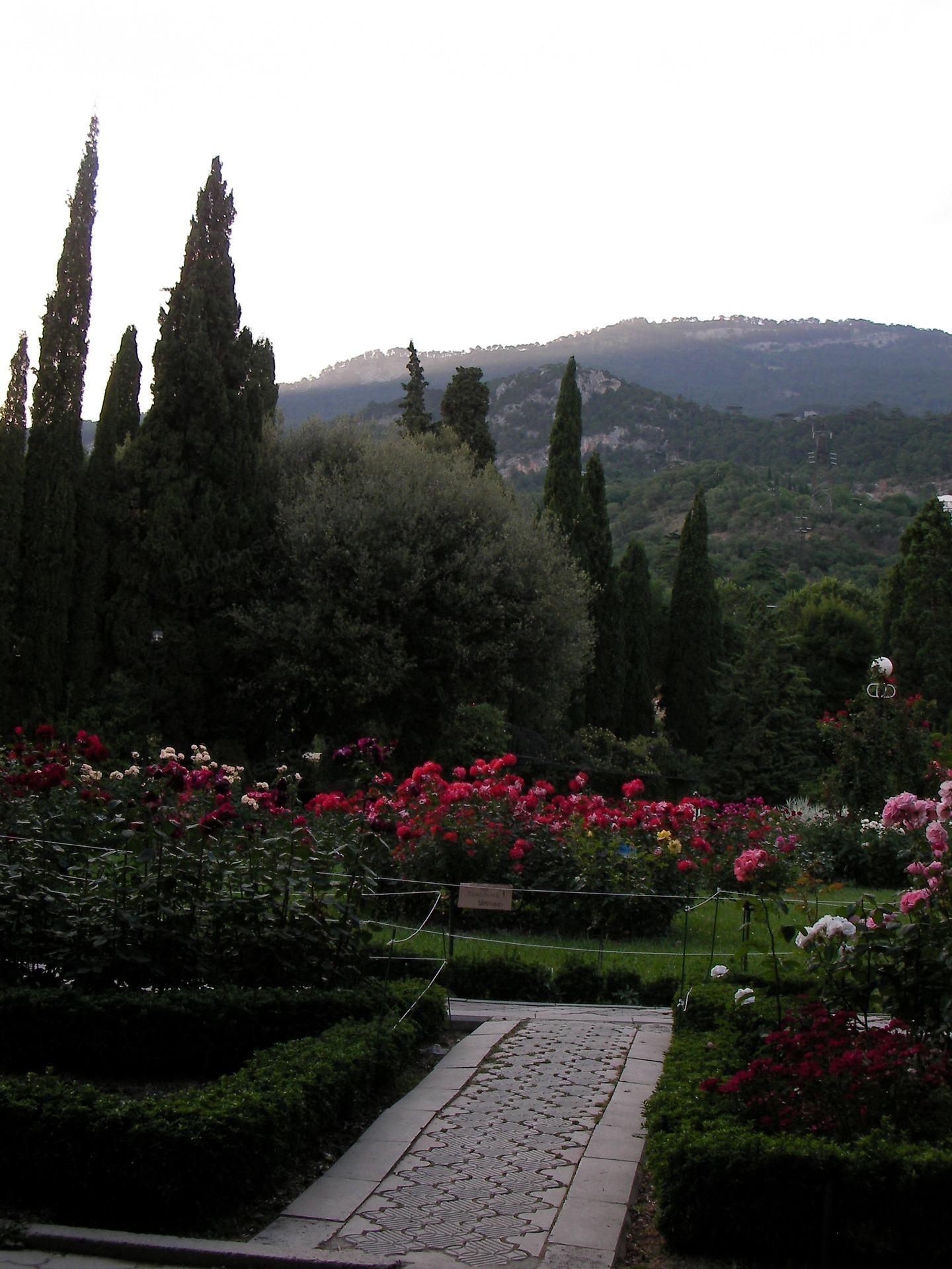 Rose Garden and the mountains