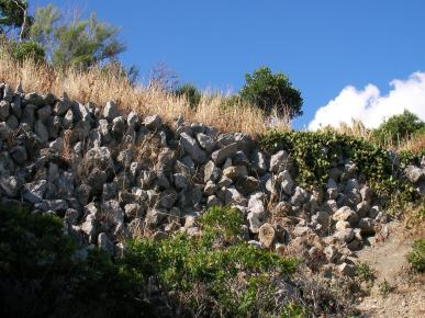 पत्थर की दीवार